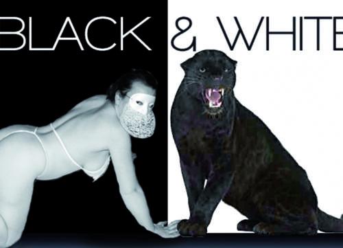 Black---White